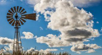 Agricoltura in Italia: record di nuove aziende under 35